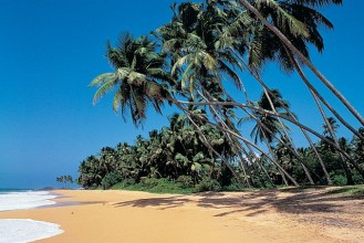 Sri Lanka 3rd Week FREE Holidays