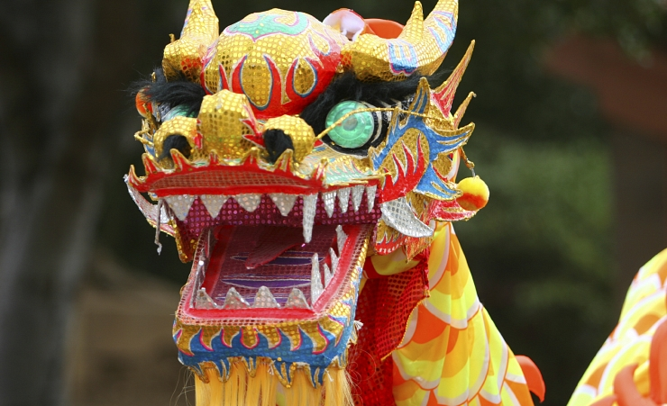 """Chinese Dragon"""