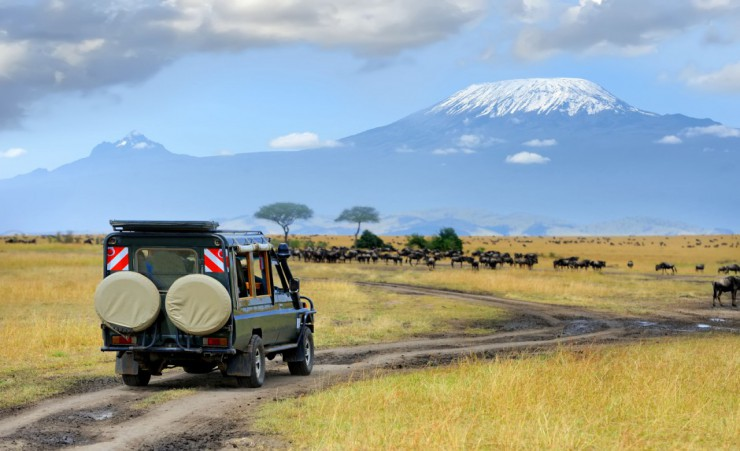 """Masai Mara Safari Game Drive"""