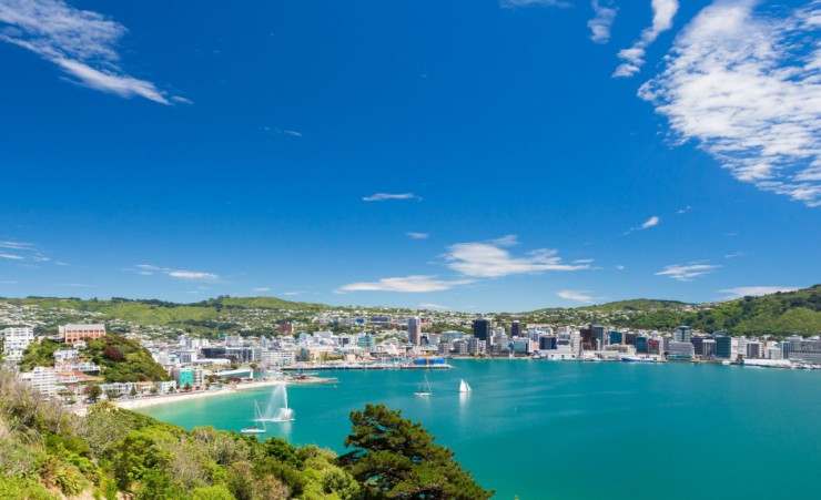 """Wellington Skyline"""
