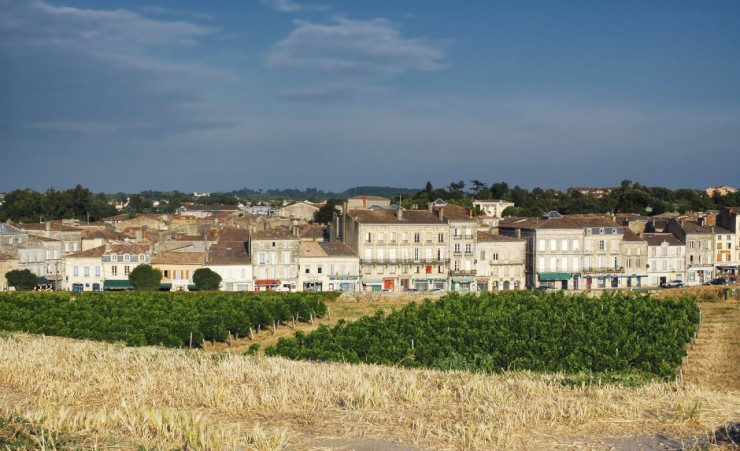 """Blaye Town With Vineyard"""