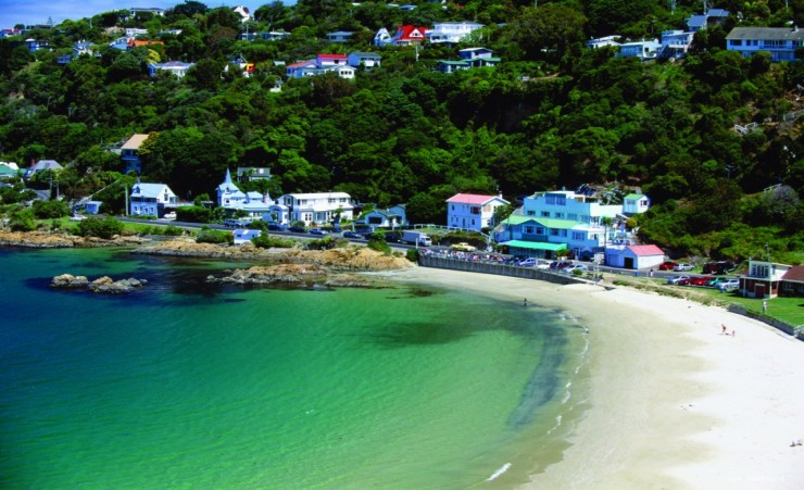 """Scorching Bay Wellington"""