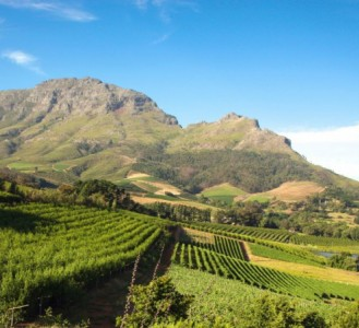 Winelands and Garden Route