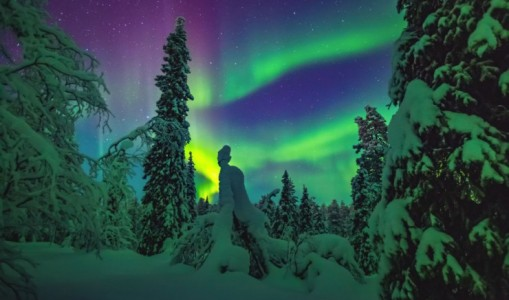 Northern Lights and Lapland Explorer