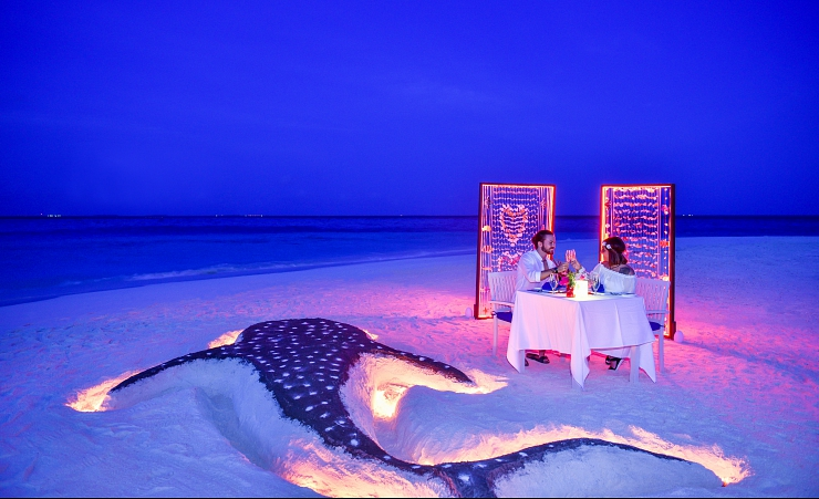 Private Beach Dinner